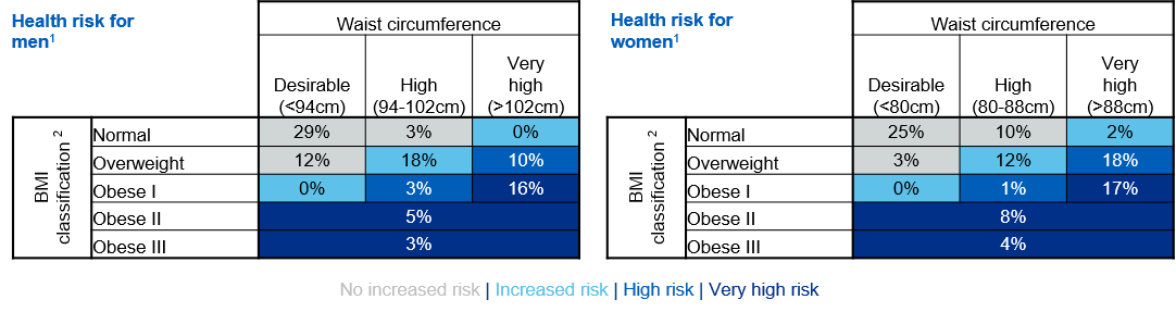 Table showing distribution of health risk classification for adults